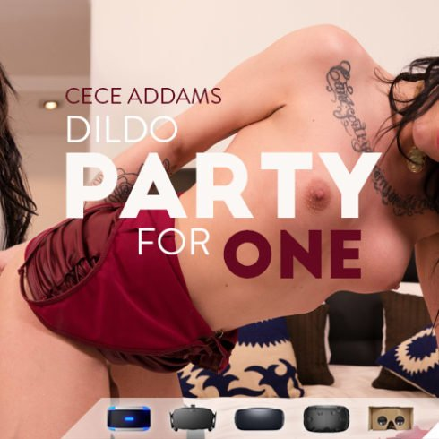 VR Trans Sex Photo Dildo party for one
